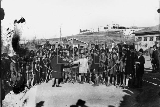 Ομάδα μαθητών κατά τη διάρκεια δενδροφύτευσης