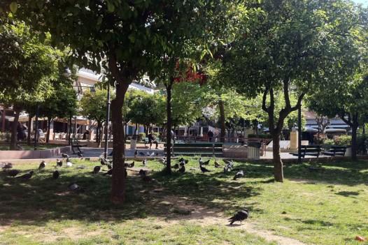 Πλατεία Αγίου Λαζάρου